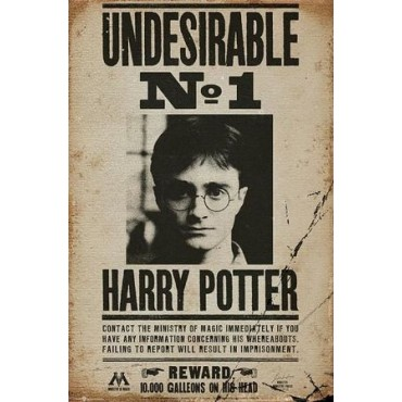 Affiche Poster Plastifié HARRY POTTER UNDESIRABLE N°1